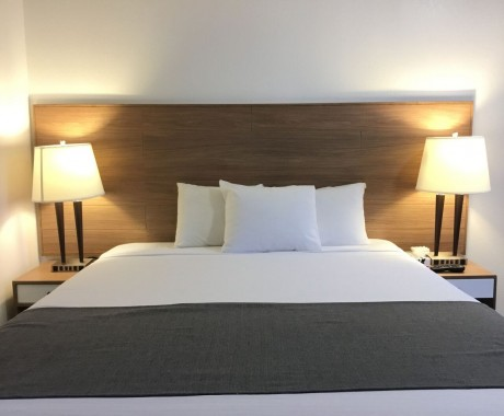 San Diego Downtown Lodge: 1 Queen Bed